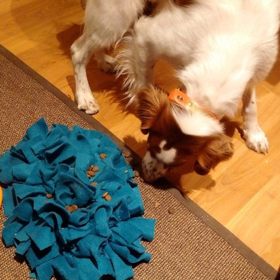 Solid Colour Snuffle Mat Dog Toy Slow Feeder Puzzle