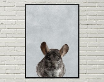 CHINCHILLA print, nursery  art print, animal art, chinchilla poster, chinchilla art, poster design, digital print, animal print, cute animal