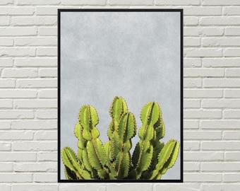 CACTUS decor, desert art print, southwestern wall art, desert plant art, cactus wall art, cactus poster, southwestern decor