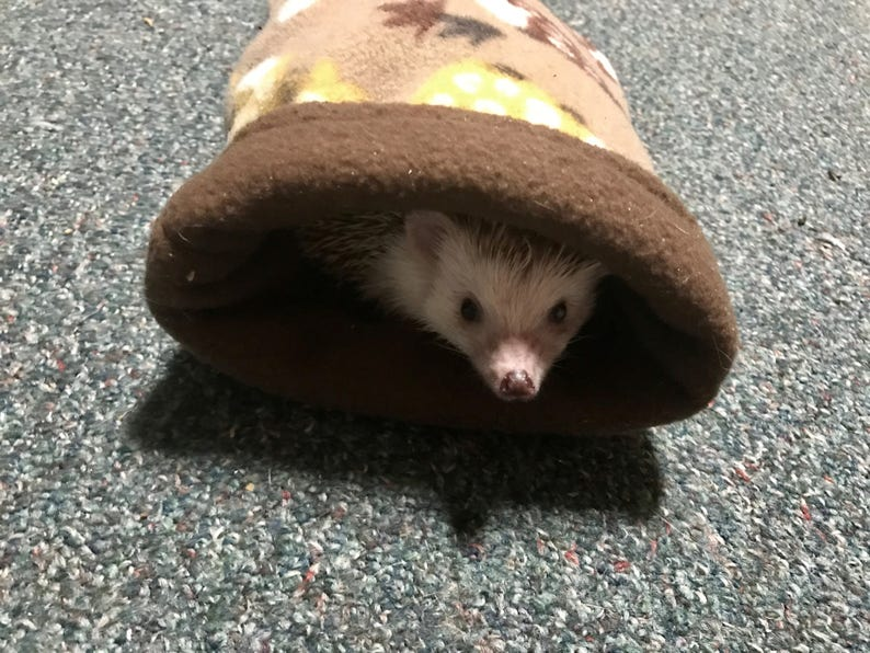 Hedgehog Snuggle Sack/Pouch Two Colors including hedgehog image 0