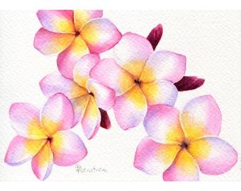 Plumeria, Watercolor Painting, Hawaiian Decor, Botanical Art, Floral, Tropical Wall Decor, Coastal Decor, Beach Wall Art, White Flower