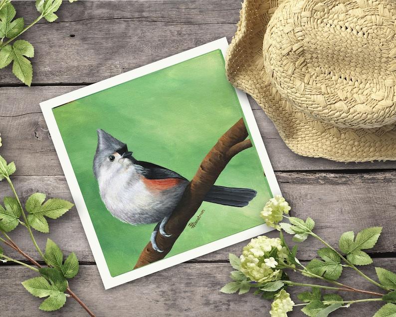 Bird Art Square Artwork for Farmhouse Decor Birds Forest Animal Tufted Titmouse Print Fine Art Giclee Songbird
