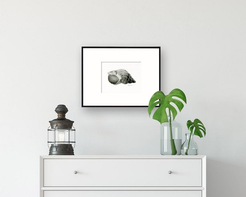 Seashell Art Illustration Fine Art Print Giclee wall art for image 0