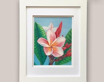 Plumeria Drawing, Hawaiian Decor, Botanical Art, Floral Colored Pencil, Tropical Wall Decor, Coastal Decor, Beach Wall Art