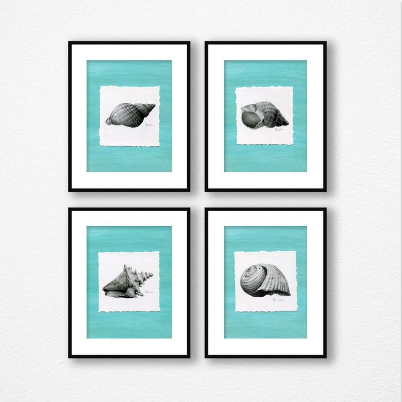 Seashell Art Set of 4 Fine Art Print Giclee wall art for image 0