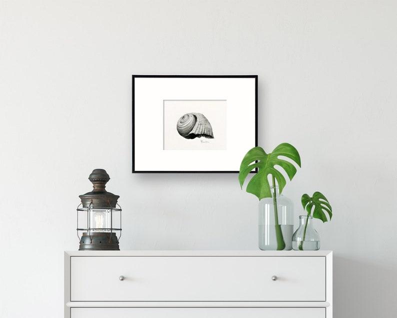Seashell Art Illustration Fine Art Print Giclee wall art for image 0
