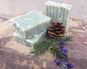 FALL SCENTS! Oh Christmas Tree Soap