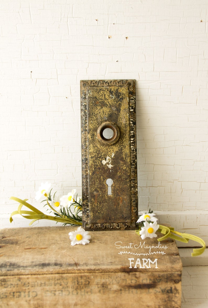 Antique Hardware Door Back Plate  Rustic Chippy Patina  image 0