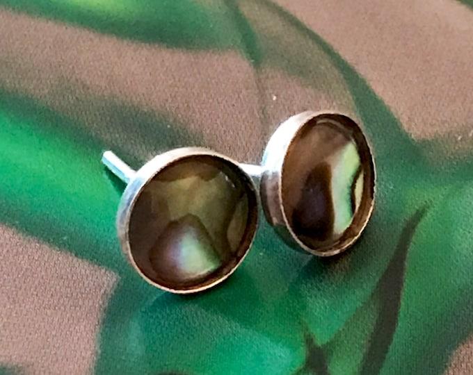 Abalone (Green) Stud Earrings