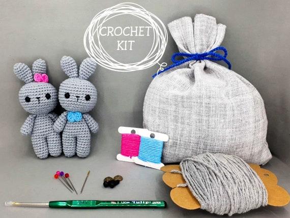 Craft Kit Crochet Easter Bunny Amigurumi Pattern For Beginner Etsy