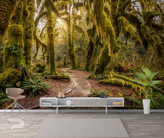 Forgotten Path Wall Mural Forest Wallpaper Jungle Rainforest Wall Mural Large Mural Removable Self Adhesive Peel Stick Photo Mural