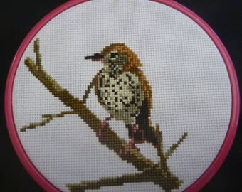 Wood Thrush Cross Stitch Pattern
