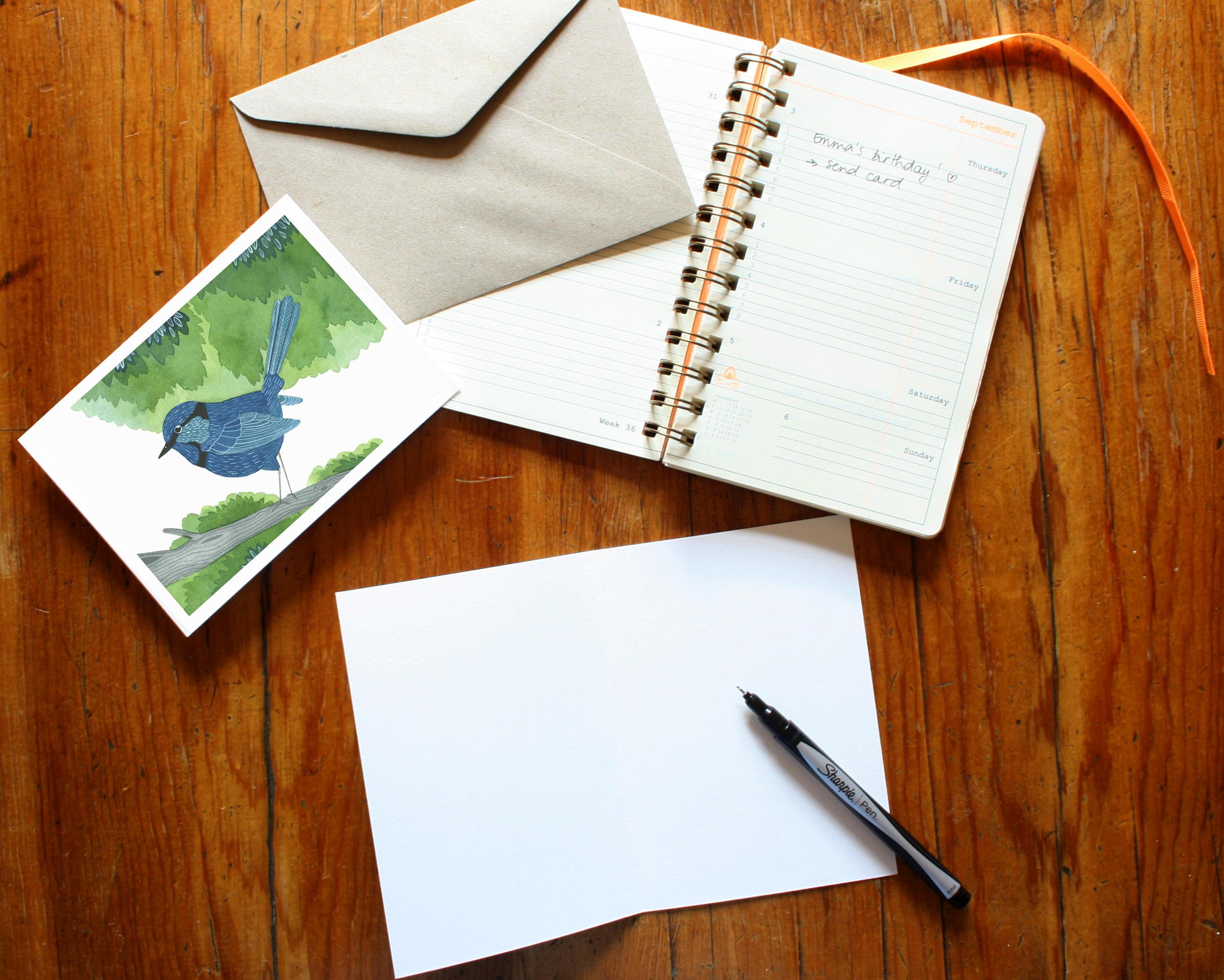 Fairy Wren Greeting Card Australiana Australian Bird