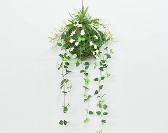 Hanging Plant Etsy