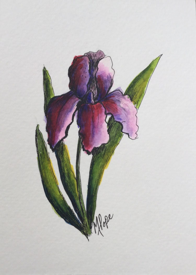 Iris Flower Paintingwatercolor And Inkfloral Painting5 X 7 Etsy