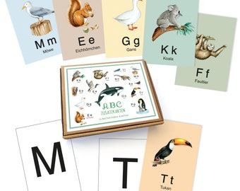 ABC ADDITIONAL CARDS SET 13 Alphabet cards as a supplementary set