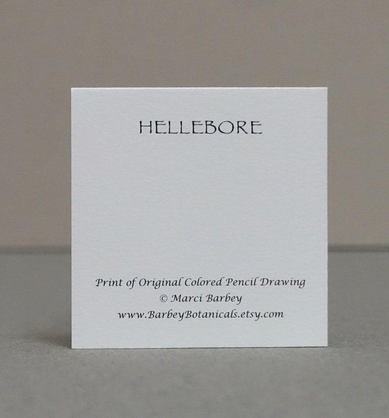 2.25 x 2.25 Set of 8 Botanical Folded Gift CardsTags Hellebore