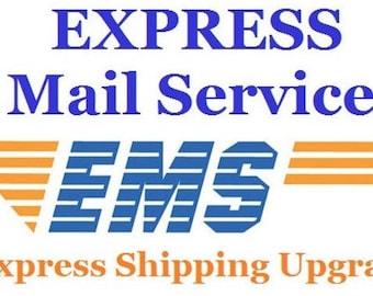 Express mail service [EMS]