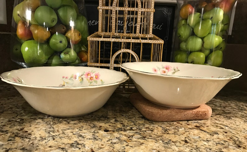 Pair of Vintage Homer Laughlin Virginia Rose Shape Vegetable Bowls Moss Rose Pattern JJ59-1950/'s