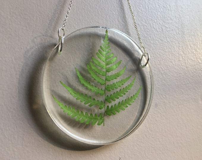 Fern Leaf Lightcatcher 1 - Silver Chain
