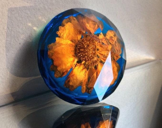 Orange Coreopsis Bloom & Transluscent Cobalt Blue Large Diamond Crystal