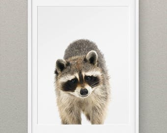 Forest Animals Set Raccoon Printables, Forest Nursery Wall Art, Woodlands Animal Nursery Prints, Animal Nursery Decor - Raccoon