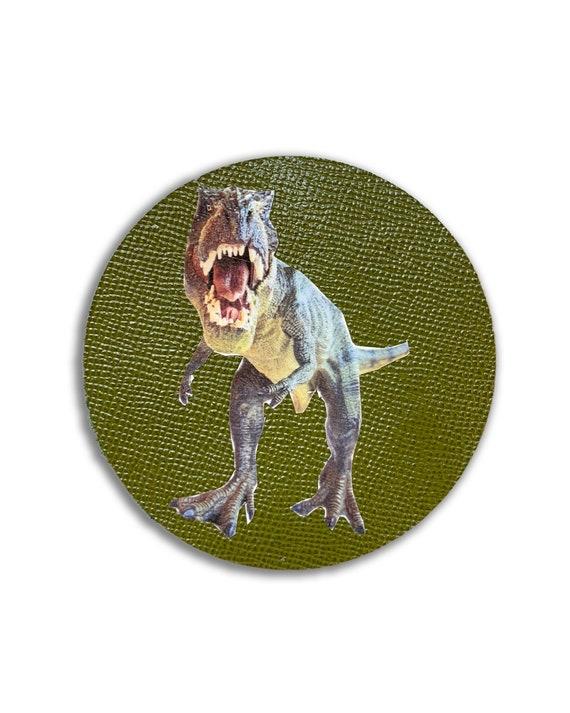 Dino-Coaster's