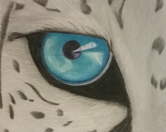 Blue Eyed Leopard