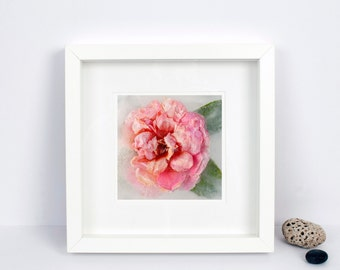 Limited Edition Photograph - Floral Wall Art - Pink Camellia - Frozen Still Life - Botanical Print - Shabby Chic - Ideal Gift