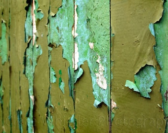 Turquoise & Olive Green Peeling Paint / Urban Decay Garage / Contemporary Wall Art / Limited Edition Print