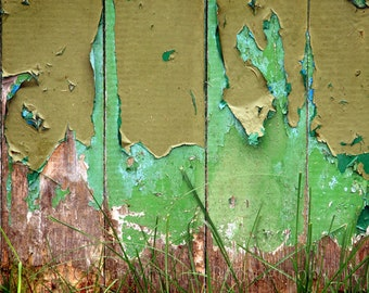 Limited Edition Archival Photographic Print A3 - Shades of Kendal Green 1 - Urban Decay Contemporary Wall Art
