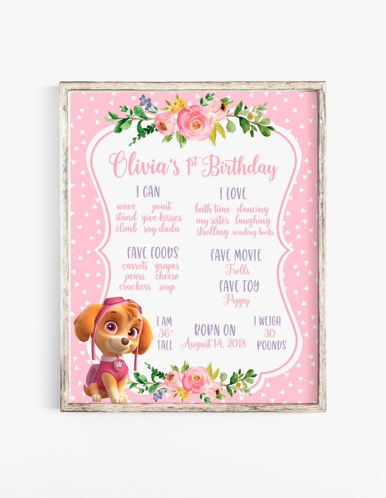 Paw Patrol Birthday Board Invitations Skye