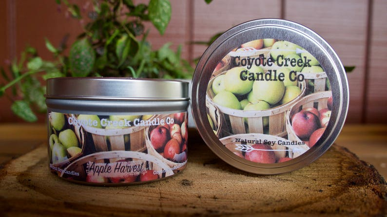 Apple Harvest 8oz. Natural Soy Candle Tin image 0