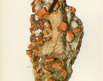 Mineral Vintage lithograph of the Wulfenite mineral from 1968
