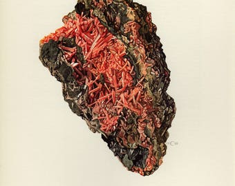 Mineral Vintage lithograph of the Crocoite mineral from 1968
