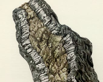 Mineral Vintage lithograph of the Graphite from 1967