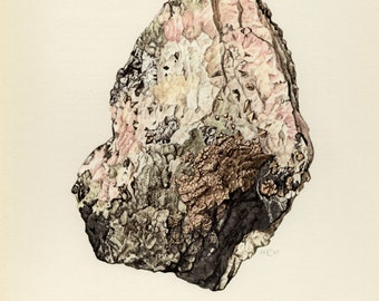 Mineral Vintage lithograph of the Nickeline or Niccolite mineral from 1967