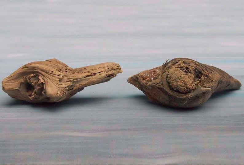 natural raw driftwood sculpture wood art supply 1086