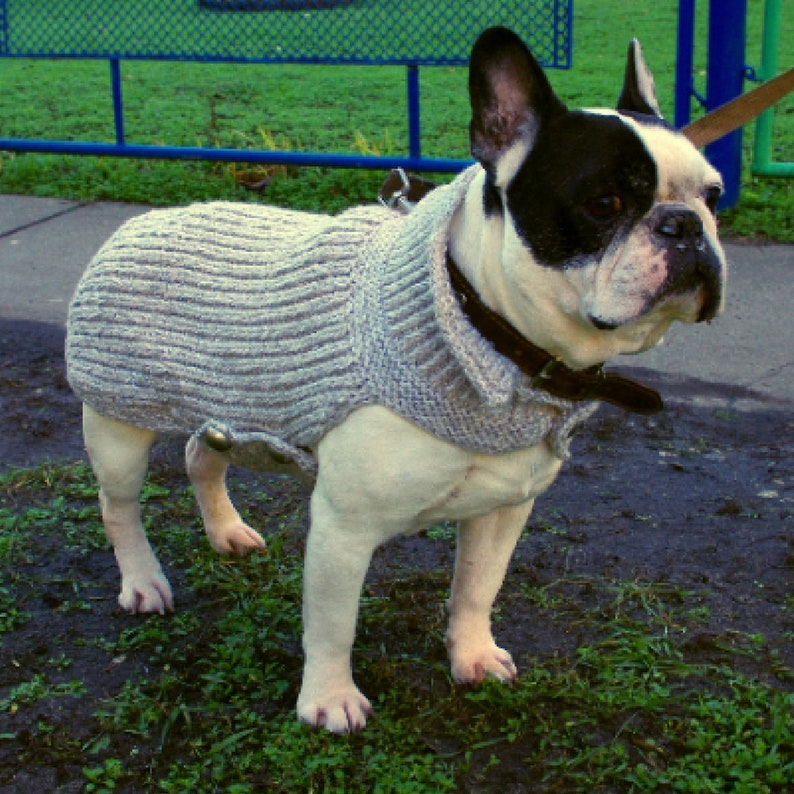 a5c329ce8 Dog sweater Bulldog gift For pet Knitted dog sweater French