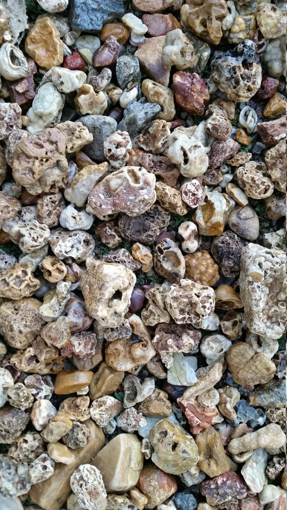 10 lbs Unique rock assortment river rock raw stone fairy garden yard pond landscaping planters aquarium rock garden art crystals rock decor