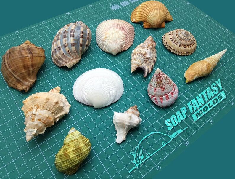 Maked from high quality silicone Sea shell #2 silicone soap mold for soap making