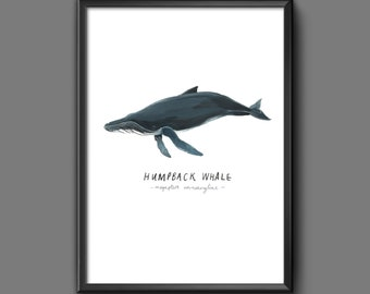 Whale print, Whale poster, Humpback whale, Whale picture, Blue Planet, Whale art, Whales