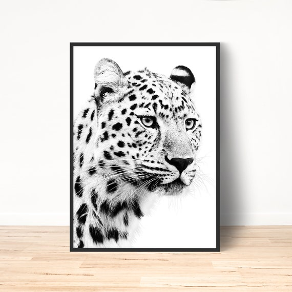 Pretty Cheetah in Grass Black//White Canvas Picture Wall Deco Art Print