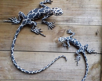 Black and White Wall Lizards