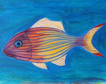 Celebrity Fish - Ozzy