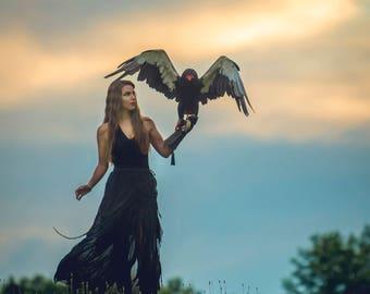 Limited Edition 8x8 Fantasy Print featuring a Bateleur Eagle | Eagle, Fantasy, bird of prey, Bateleur, Dark, Magical