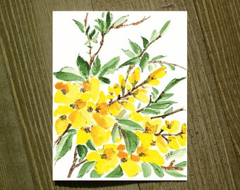Forsythias - Note card sets featuring designs by Jackie Rizzo - Pack of 12 with envelopes