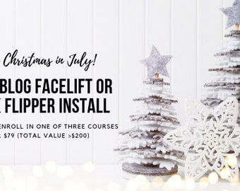 Christmas in July! Free Blog Facelift or Book Flipper Installation w/ Choice of 3 Courses - Pinterest Amp, Copy Cocktail, Email Magnet Magic