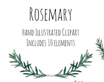 Clipart - Illustration - Rosemary herb - wreath, frame and decorations