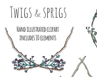 Clipart - Illustration - Twigs & Sprigs - wreath, frame and decorations